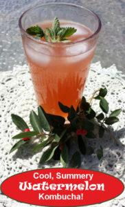 Watermelon Kombucha summery drink