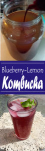 Blueberry-Lemon Kombucha